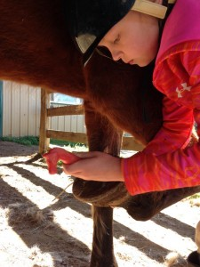 Hoof picking