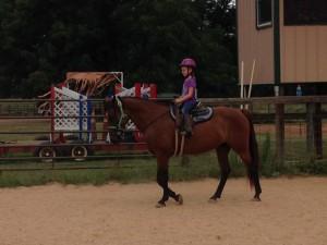 Horse Camper 2